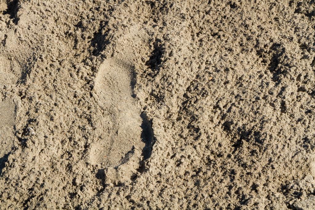 Sand mellan tårna är som balsam för själen | Foto: Michael Krantz