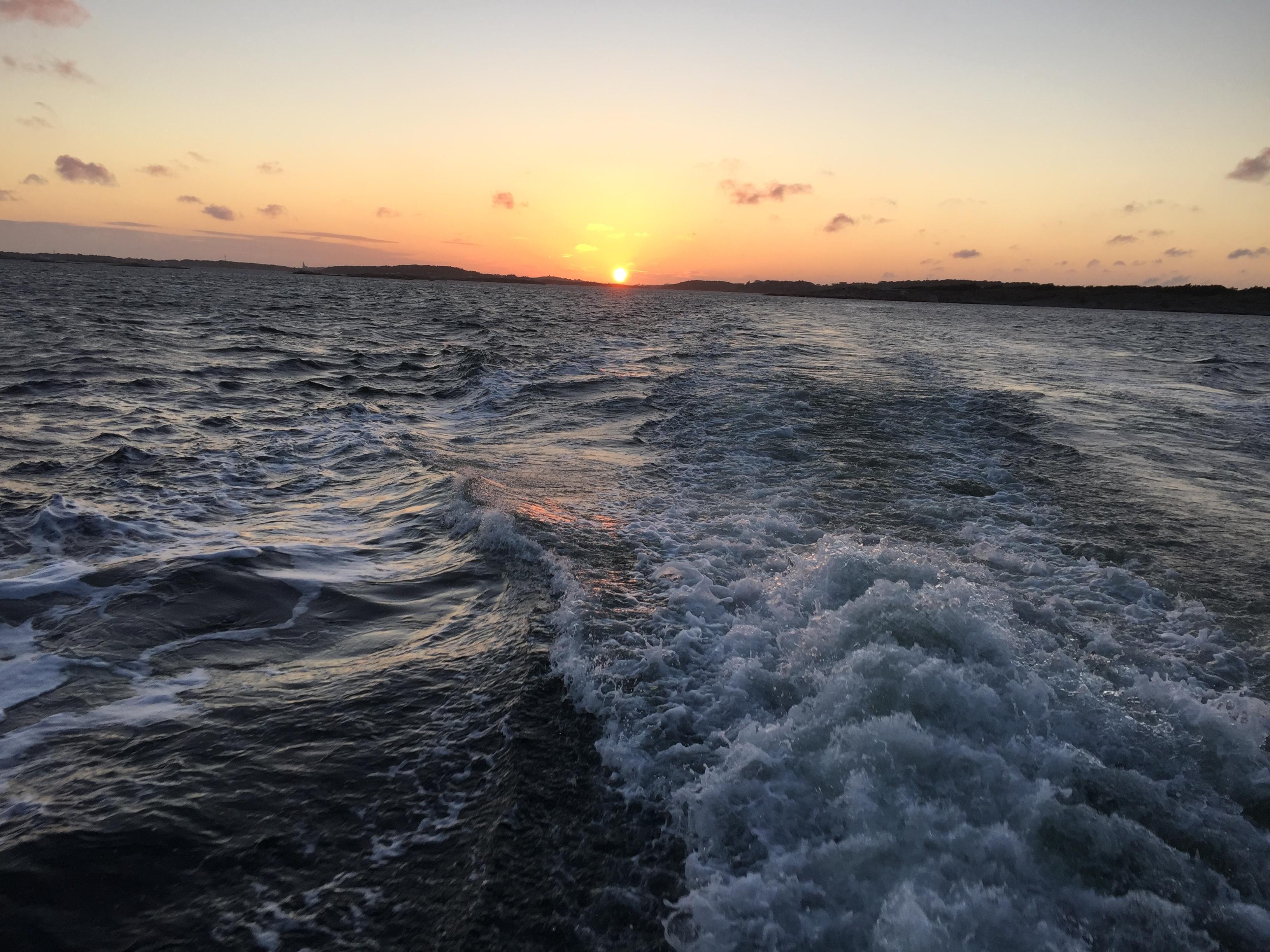 Skön båttur i solnedgången | Foto: Patrik Krantz